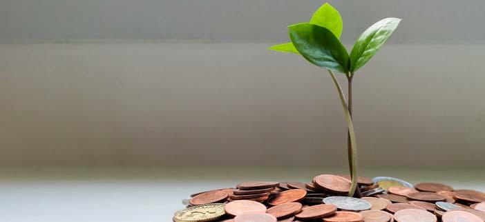 Creciendo los ahorros como una planta