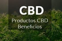 productos y beneficios CBD