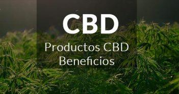 productos y beneficios CBD