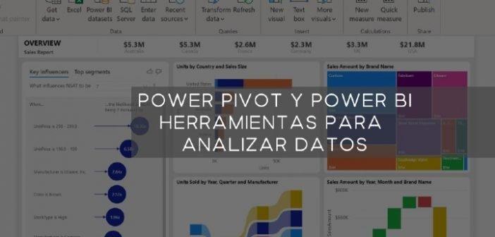 Power pivot imagen con rotulo